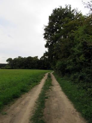 Le Nid de l'Abres-Baumhaus-Frankreich (7)