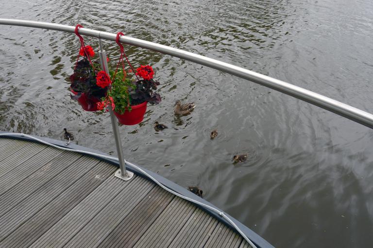 homeboat-nieuwpoort-6